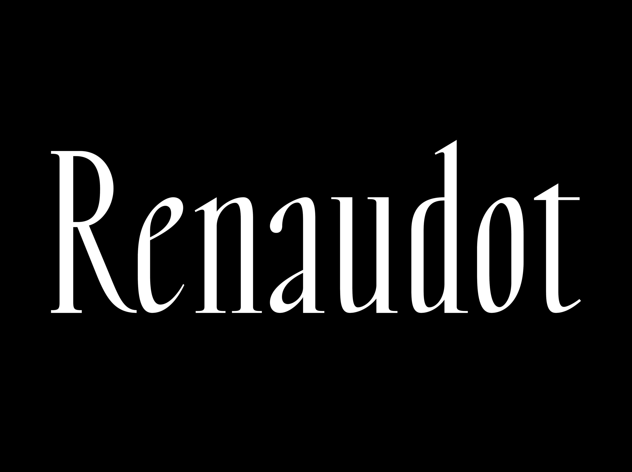 RenaudotWebsite01